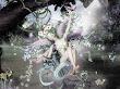 Laugh Of Fairy