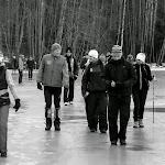 2014.02.24 Elamusretke paraad Koitjärve rabas - AS20140224KOITJARVE_039S.JPG