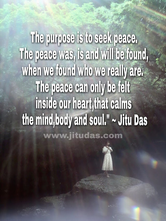 The purpose of life is to find peace quotes by Jitu Das Philosophy quotes