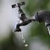 Senado aprova PEC que inclui água potável como direito fundamental