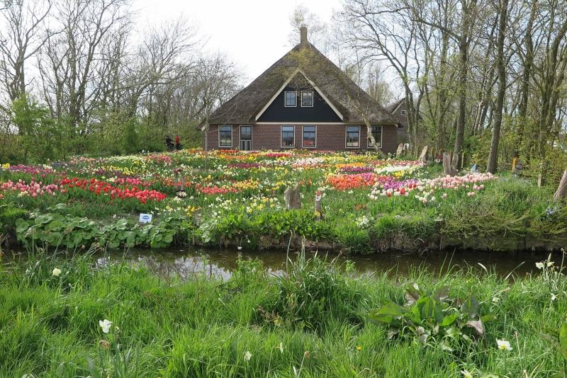 Weekend Noord Holland 2016 - IMG_6663_800x534.JPG