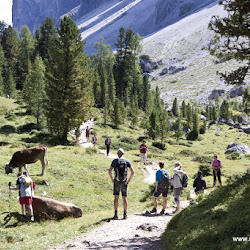 Wanderung Villnösstal 22.08.16-6900.jpg
