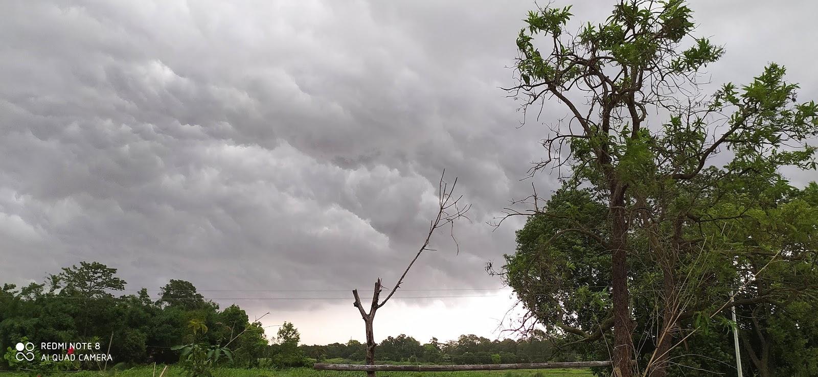 बिहार कई जिलों में हुई मूसलाधार बारिश, व्रजपात व दीवार गिरने से 5 की मौत