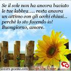 frasi-buongiorno-amore-006.jpg