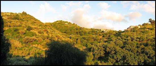 Un tout petit brin de Sicile IMG_0094-95