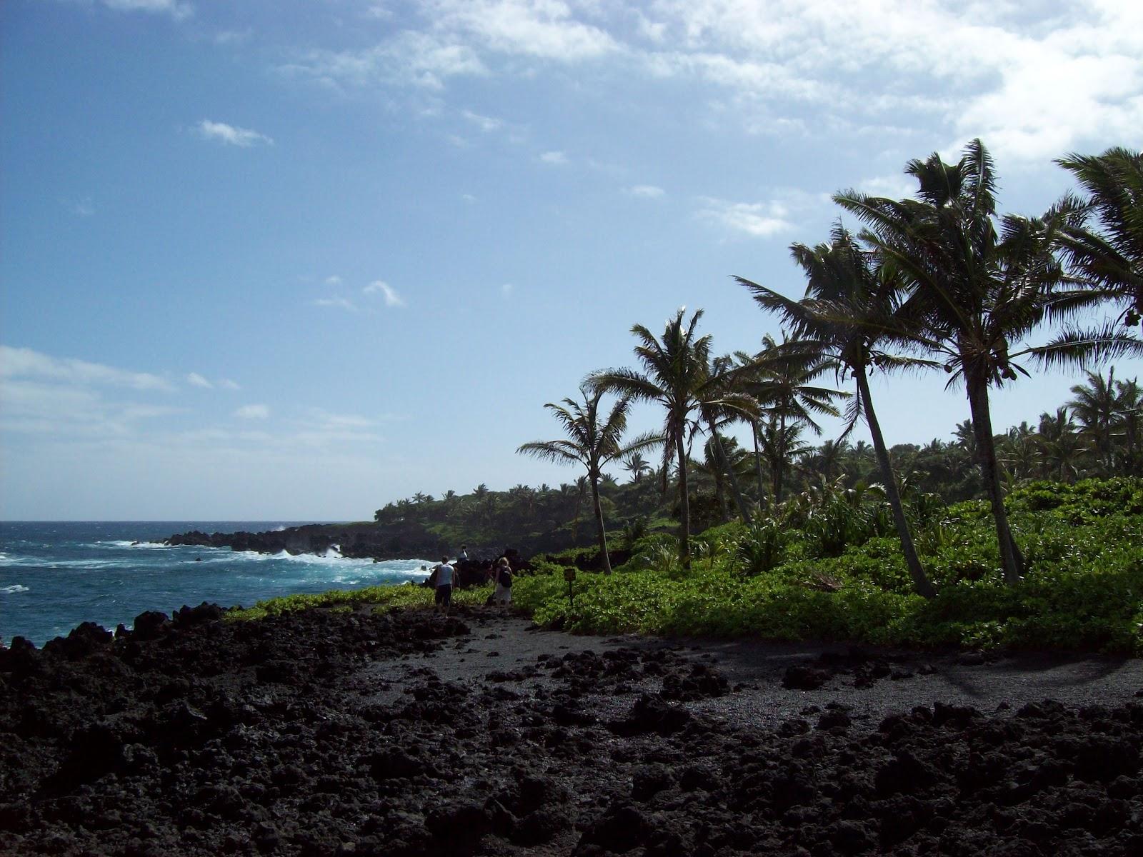 Hawaii Day 5 - 100_7478.JPG