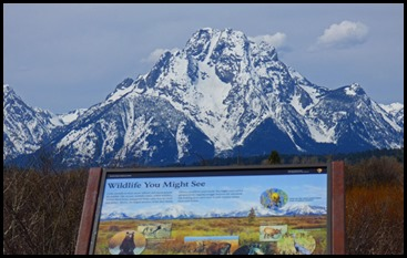 What you might see -- Tetons