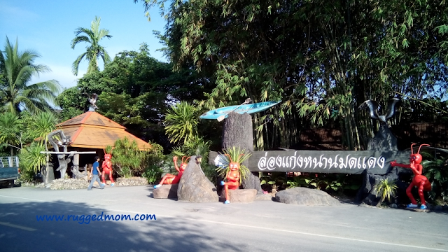 Thailand | Berkayak di Nhan Moddang Resort, Phattalung