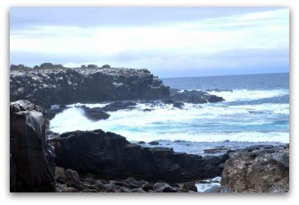 travel, destination, Galapagos