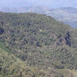 Forêt des nuages sur le Cerro del Tablazo, 3480 m (Subachoque, Cundinamarca, Colombie), 13 novembre 2015. Photo : J.-M. Gayman