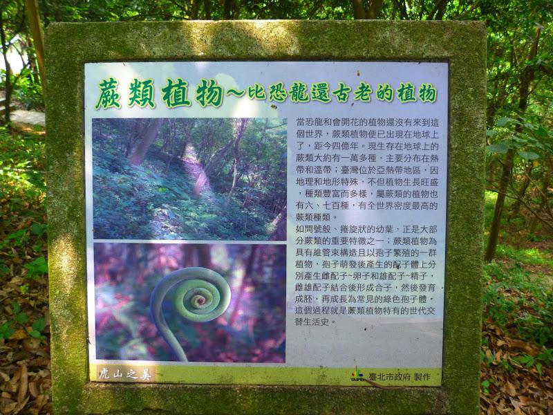 Taipei. Si Shou Shan, et la découverte des maisonnettes du professeur Y I   易教授 - P1340645.JPG