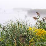 Туман на озере Машэну