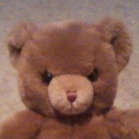 Teddy Power Photo 11