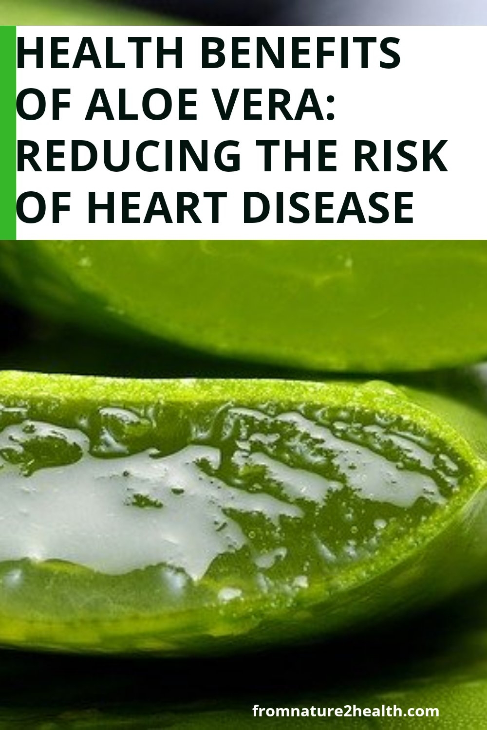 Health Benefits of Aloe Vera: Reducing the Risk of Heart Disease