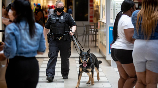 New security program sniffs out weapons at Cumberland, Perimeter malls