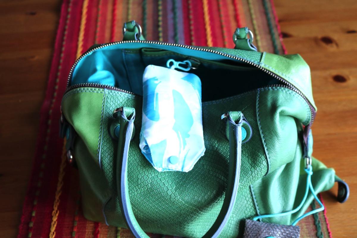 Gabs Bag 5