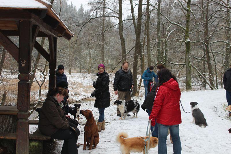 01. Januar 2016: Neujahrswanderung ins Waldnaabtal - IMG_1507.JPG