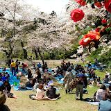 2014 Japan - Dag 7 - janita-SAM_6160.JPG