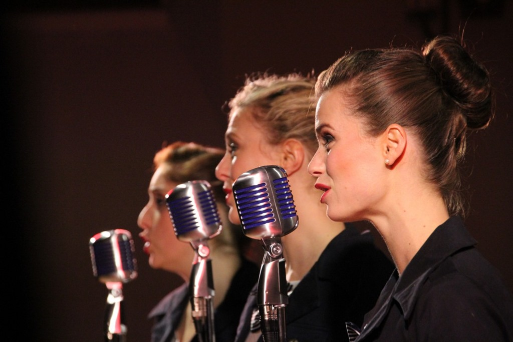 [singers_microphone_sing_concert5]
