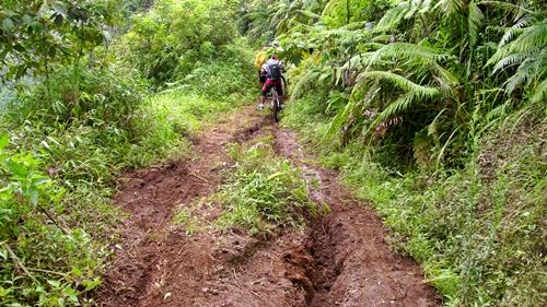 Tapi sayang sekali jalur yang indah ini harus rusak karena ban motor Trail yang menggerusnya. Perjalanan pun sedikit terhambat karena harus menuntun sepeda di jalan yang rusak.