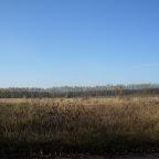 Озеро Круглое Подгоренский район 024.jpg