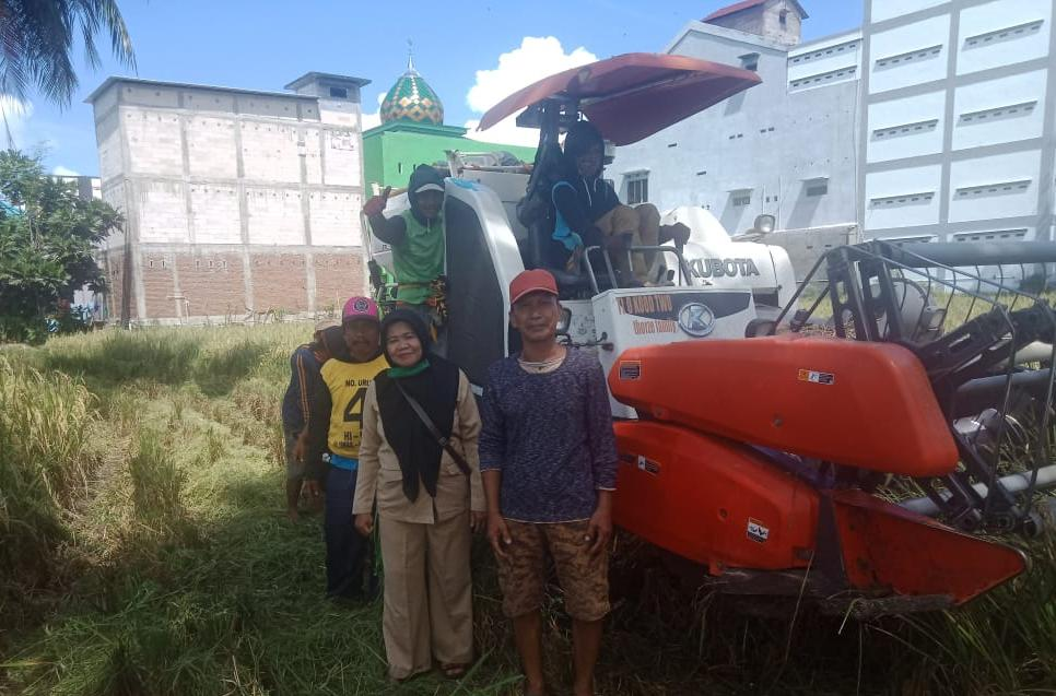 Penyuluh di Soppeng Dampingi Petani Panen Ditengah Covid 19 Berharap Harga Gabah Membaik