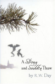 Strong & Sudden Thaw Iris Print cover