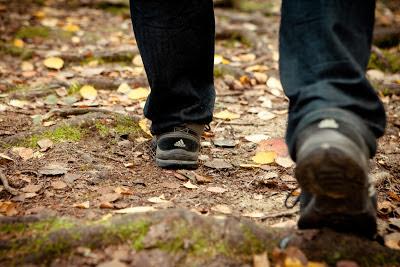 Närbild på fötterna hos vandrare på skogsstig.