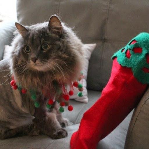 Beau stocking sml