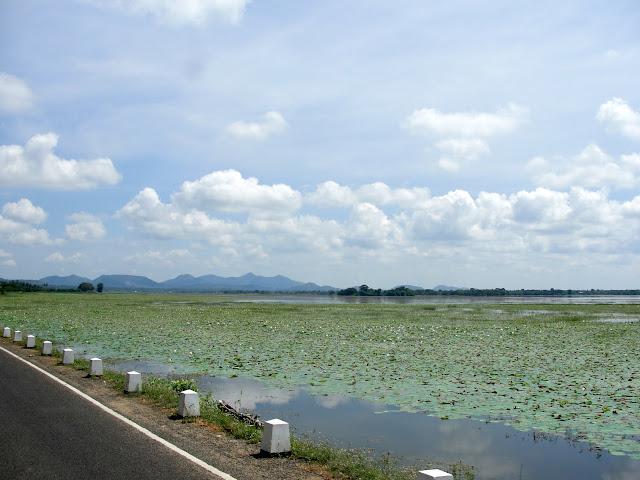 Tissa-Lake-2