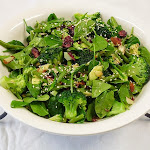 Broccoli Avocado and Cranberry Salad.jpg