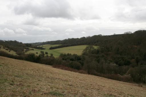 1003 006 Coulsdon, England