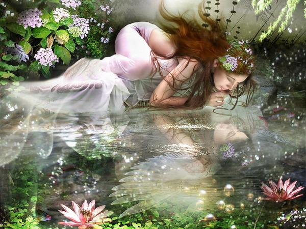 Reflected In A Magic Lake, Fairies 3