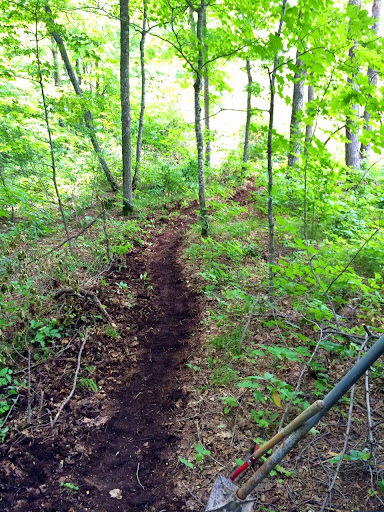 Fresh trail!