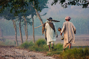 Life of Farmers in Punjab. An early morning view.