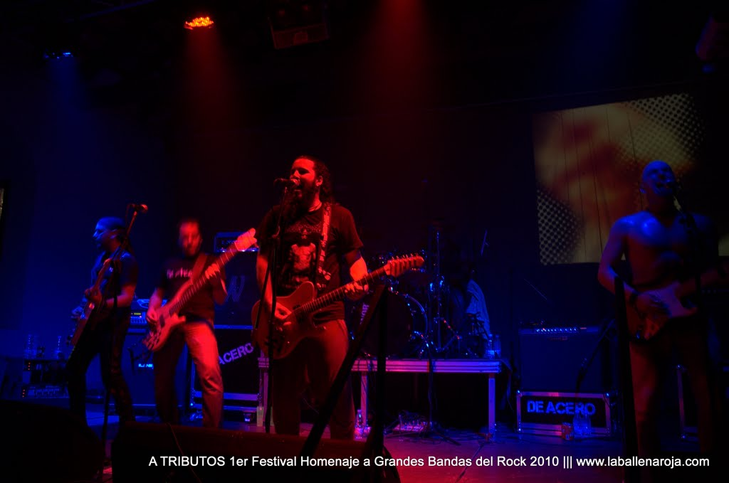 A TRIBUTOS 1er Festival Homenaje a Grandes Bandas del Rock 2010 - DSC_0127.jpg