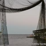 02-07-15 Corpus Christi & South Padre Island - _IMG0506.JPG