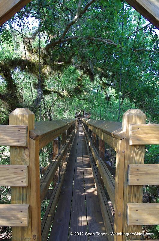 04-06-12 Myaka River State Park - IMGP9886.JPG