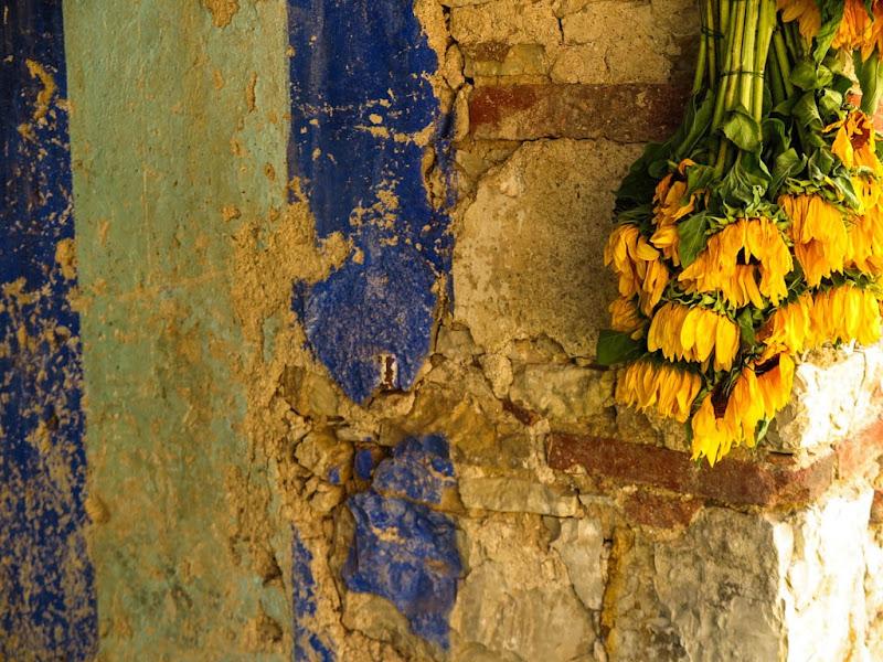 Slow Flowers Italy-23