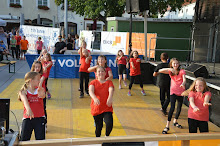 Stadtfest Herzogenburg 2014_ (18)