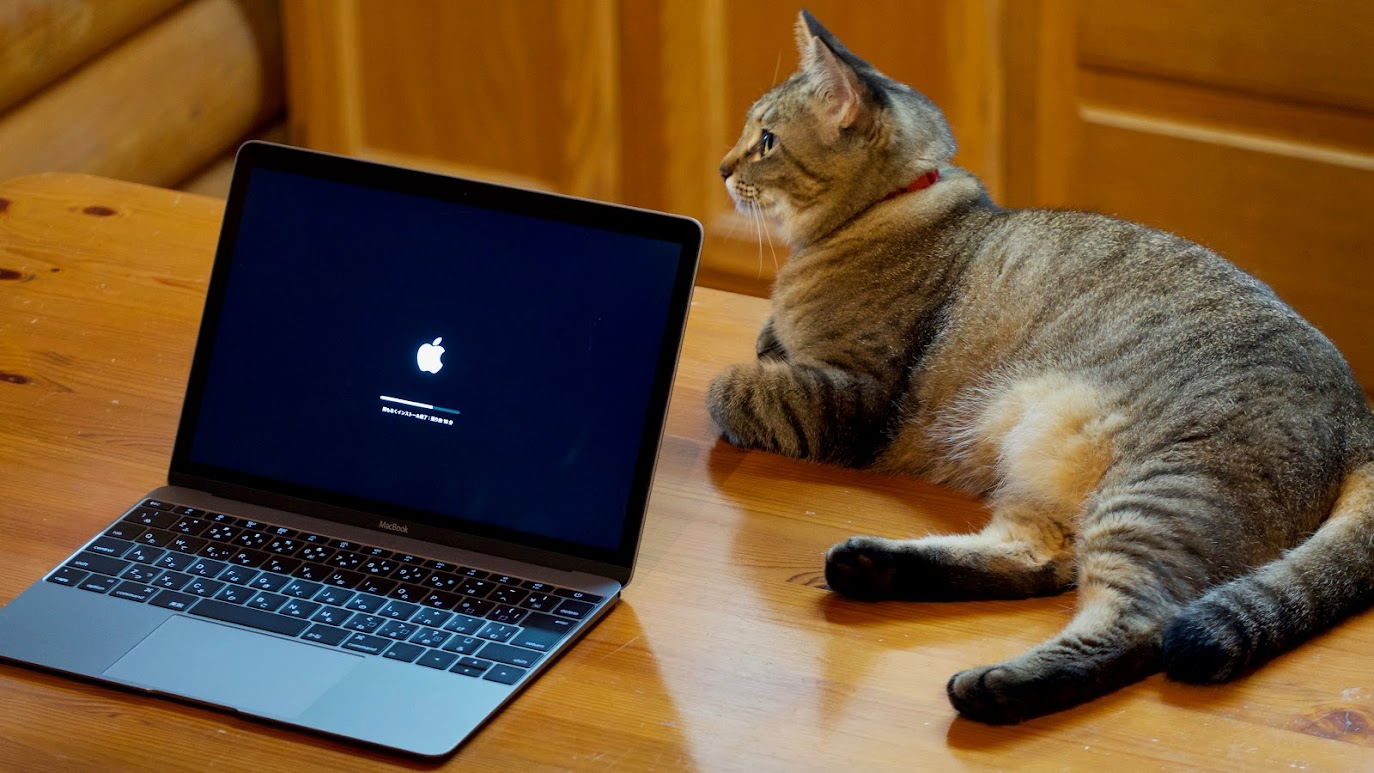 MacBook (Early 2016) and Cat ISON
