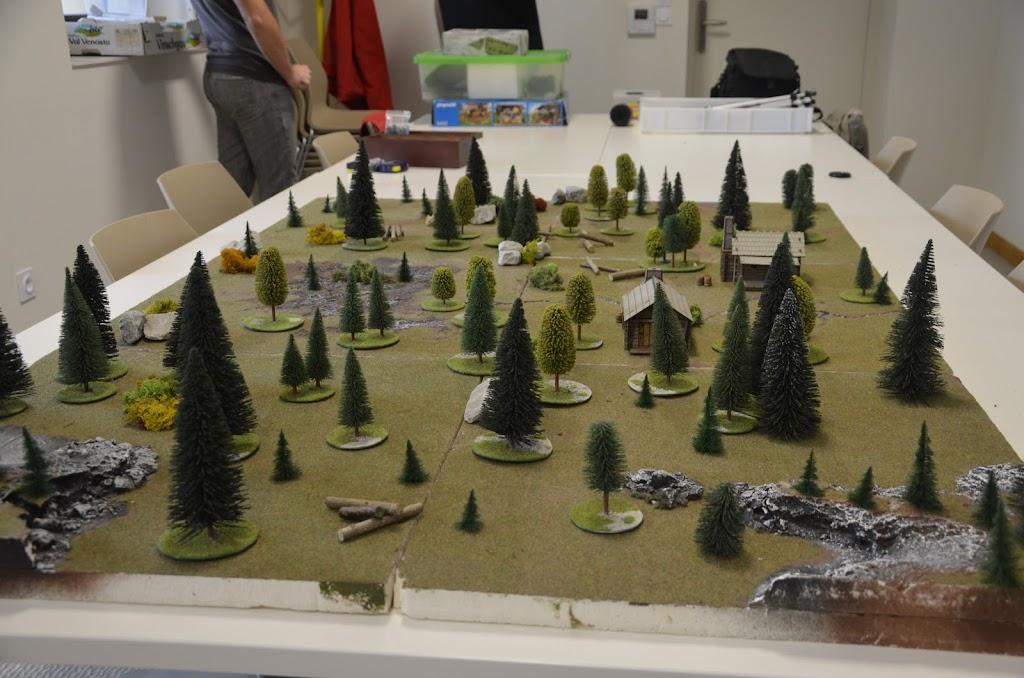 Grosse déroute dans les bois _DSC0215