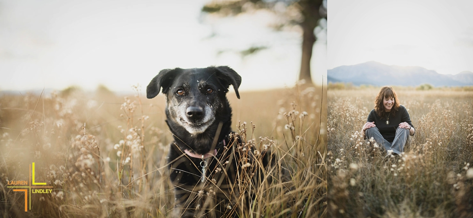 Tahoe Portraits with Dogs