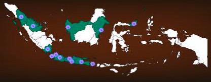 Lumpuhnya Peran Negara dalam Menangani Covid-19