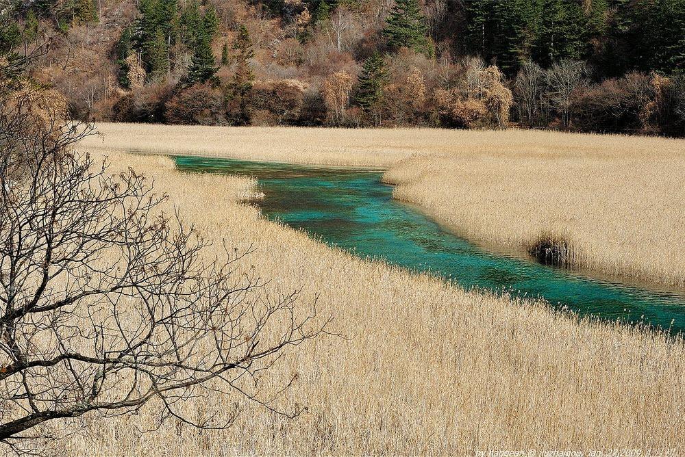 reed-lake-3