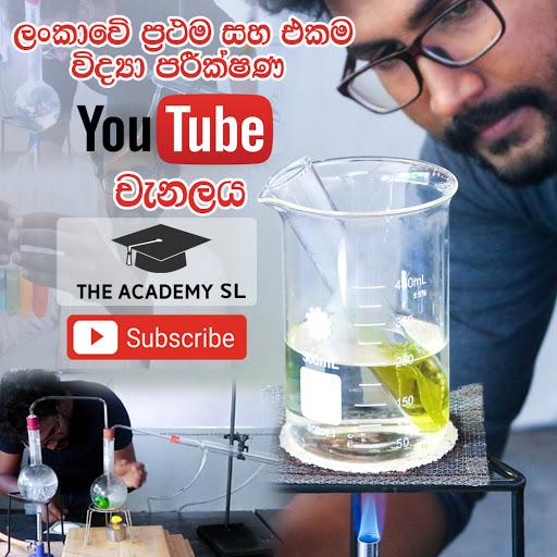 The Academy SL
