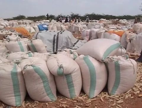 Bags of Maize from SMEs from Bura scheme