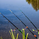 20140524_Fishing_Bronnyky_014.jpg