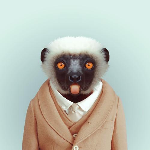 *Zoo Portraits動物時尚秀:正經八百時裝篇! 20