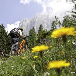Manfred Stromberg Freeridewoche Rosengarten Trails 07.07.15-9742.jpg